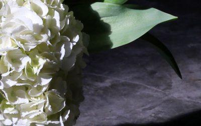 Rachel's Rose Garden